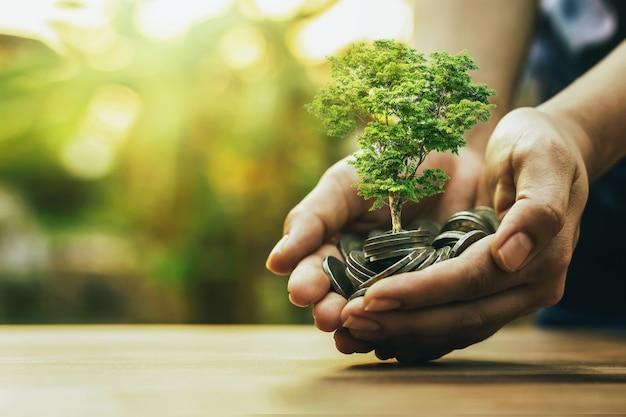 Sadzenie roślin na stosie monet pod ręką koncepcje inwestycyjne w biznesie