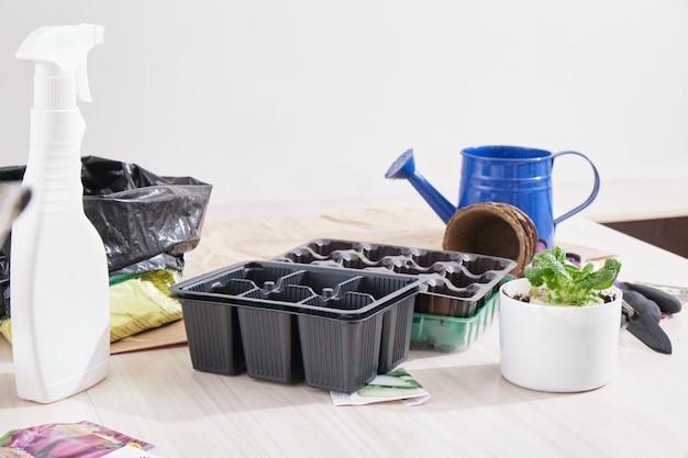 Sadzonki do nurkowania w domu, ogród w domu, piękne hobby ogrodnicze, narzędzia ogrodnicze i sadzonki leżą na stole
