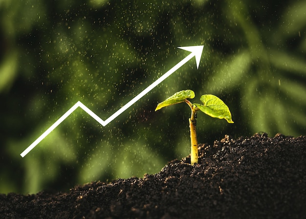 Sadzonki wyrastają z żyznej gleby z cyfrowym wykresem strzałkowym.