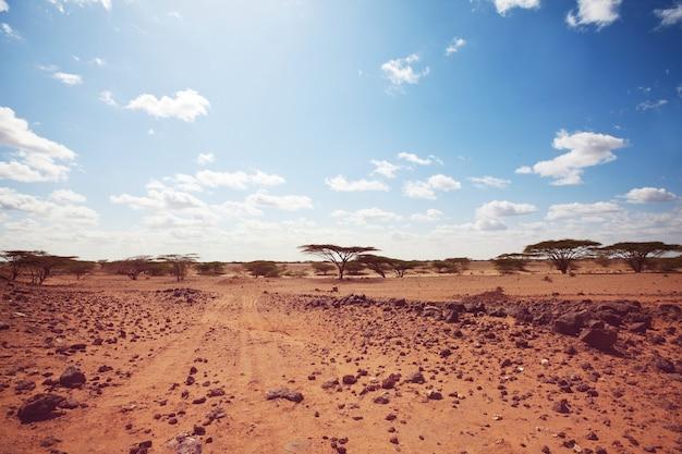 Safari i ekstremalne podróże po afryce. susza górski krajobraz z pyłem z drogi w wyprawie samochodowej.