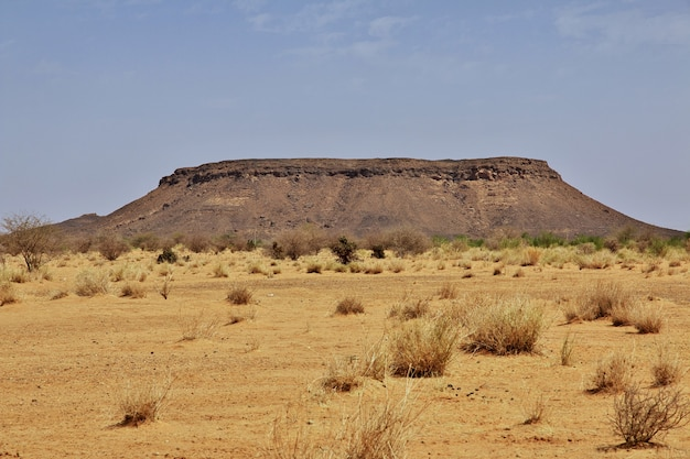Sahara w sudanie