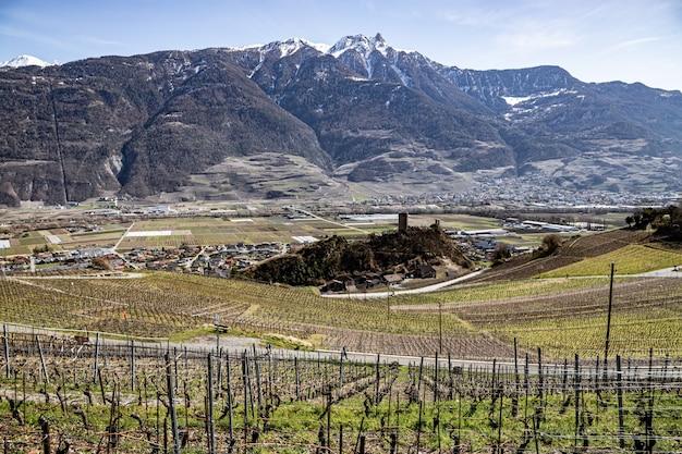 Saillon szwajcaria zamek saillon pierre avoi i winnice podczas wiosennej wędrówki po farinet