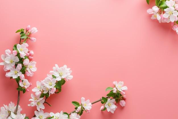 Sakura kwitnące, wiosenne kwiaty na różowo