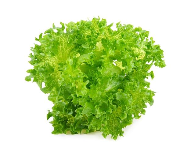 Sałata lodowa zielona frillice na białym tle