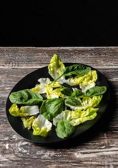 Sałatka warzywna z wysokimi liśćmi
