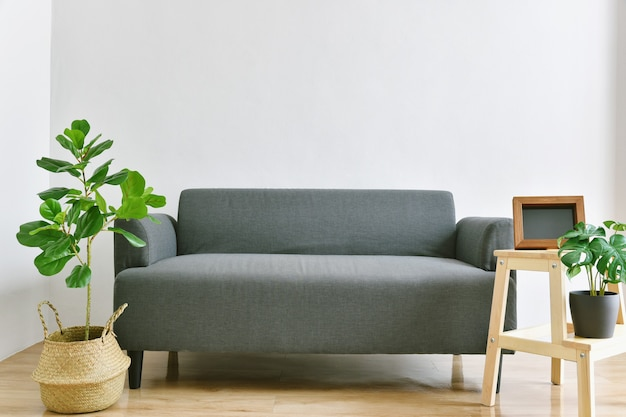 Salon z kanapą z tkaniny i zielonymi roślinami doniczkowymi do oczyszczania powietrza w pomieszczeniach.