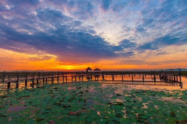 Sam roi yot freshwater marsh
