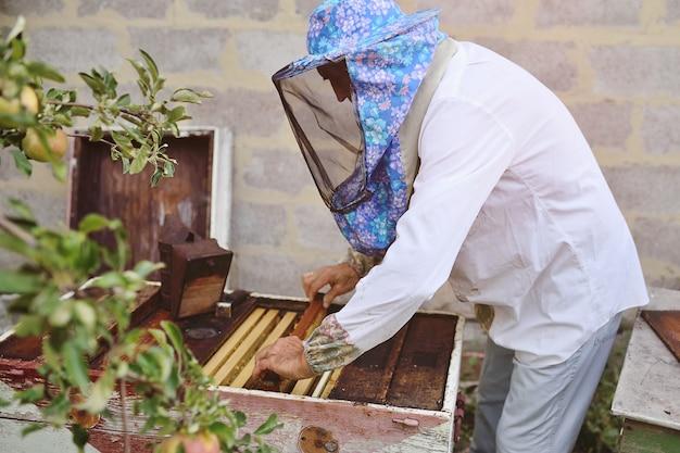 Samiec pszczelarza wyjmuje z ula lub pasieki ramy dla pszczół