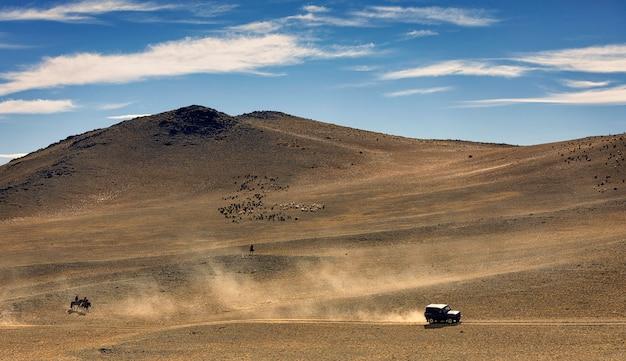 Samochód jedzie po drodze. dużo pyłu. stado owiec i kóz pasie się na pustyni w pobliżu gór. mongolia. ałtaj. azja