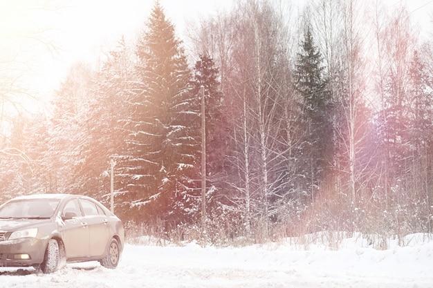 Samochód jest szary na drodze w lesie. wyjazd na wieś w zimowy weekend. samochód na drodze przed parkiem zimowym.