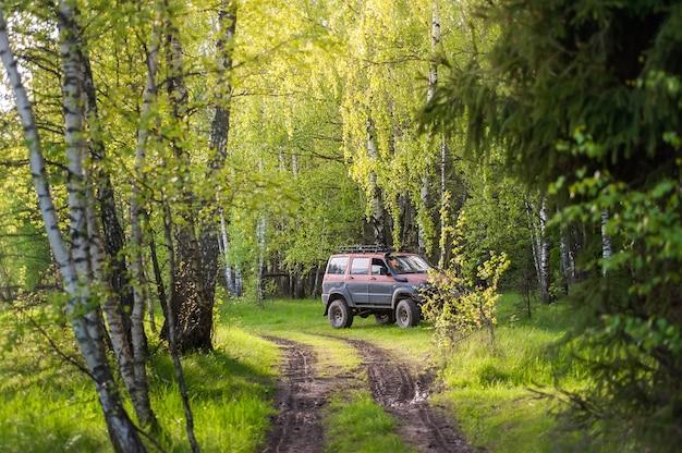 Samochód stoi przy drodze w lesie