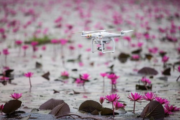 Samolot dronów unoszący się nad jeziorem różowego lotosu.