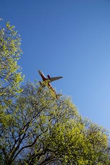 Samolot zbliża się do finału nad tropikalną wyspą samolot na błękitnym niebie w pobliżu gałęzi drzewa