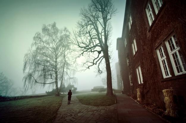 Samotna kobieta spaceru w mglistym parku rano. mgła w parku.
