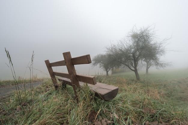 Samotna ławka w mglistej pogodzie