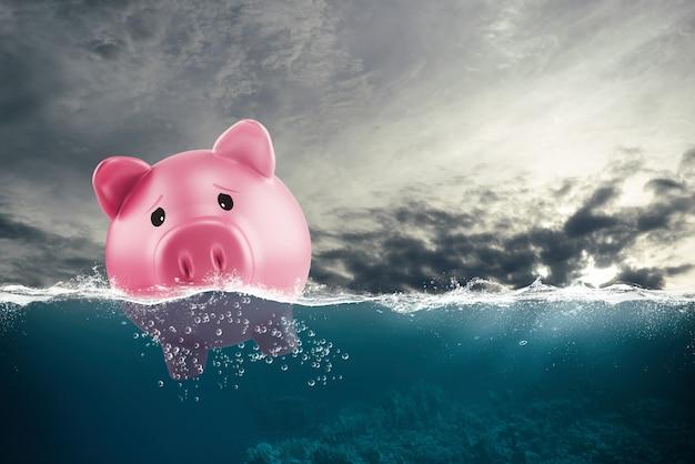 Samotna skarbonka pływa po złych wodach z powodu kryzysu