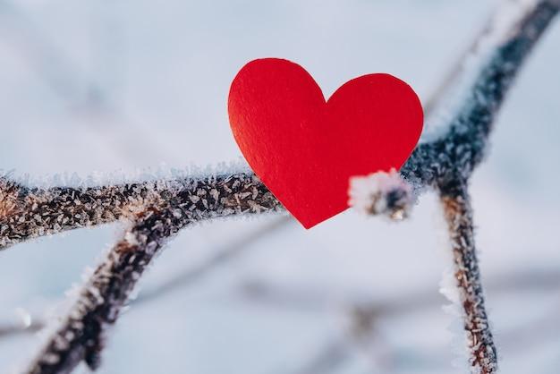 Samotna walentynka. czerwone serce na mroźnej, lodowatej gałęzi w zaśnieżonym lesie. walentynki.