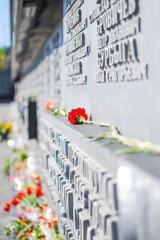 Samotny czerwony kwiat na pomniku