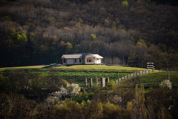 Samotny dom na wzgórzu w środku lasu. skraj lasu z przytulnym domkiem. z dala od miasta i innych ludzi. poczucie spokoju i bezpieczeństwa.