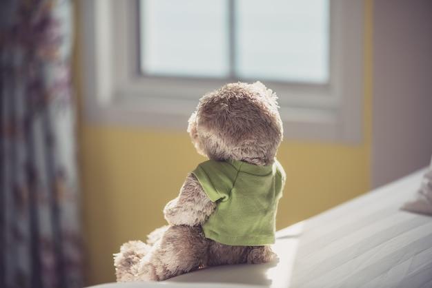 Samotny miś przy oknie