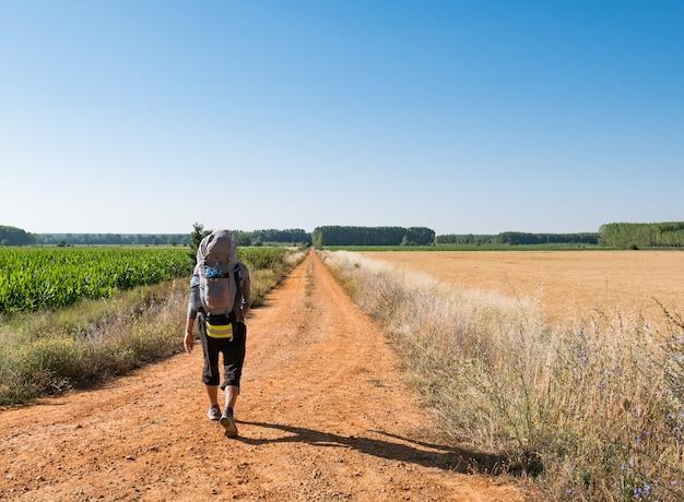 Samotny pielgrzym z plecakiem spacerujący po camino de santiago w hiszpanii, droga św. jakuba
