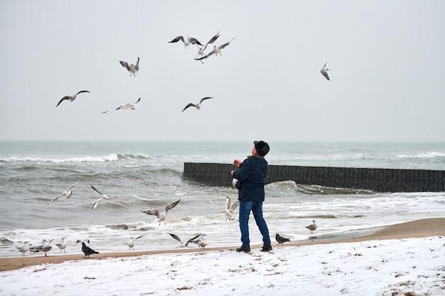Samotny staruszek karmi mewy, mewy i inne ptaki na morzu. widok z tyłu osoby, pochmurny zimowy krajobraz.