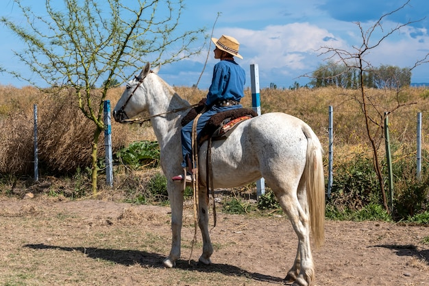 San rafael, argentyna, 10 października 2021; argentyński gaucho w kreolskich grach zręcznościowych w patagonii w argentynie.