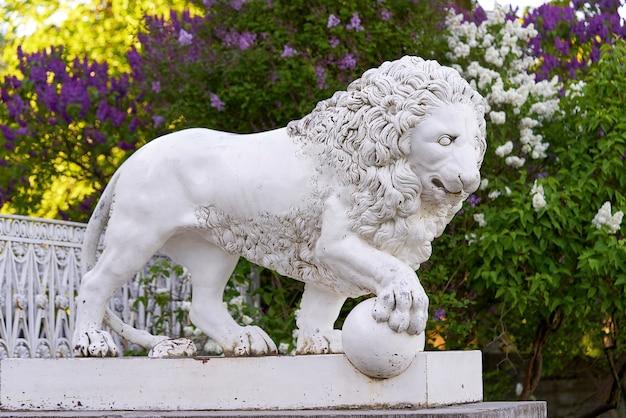 Sankt petersburg, rosja - 03 czerwca 2021: marmurowy lew na tle kwitnących bzów w pobliżu pałacu elagin w petersburgu