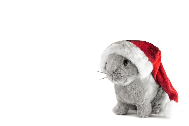 Santas kapelusz i boże narodzenie królik na białym tle. noworoczna kompozycja świąteczna 2021.