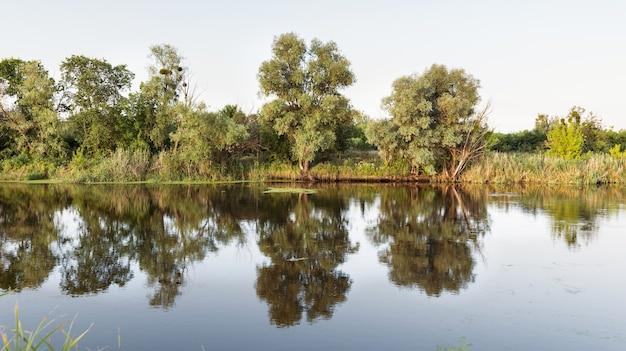 Sceneria dużego spokojnego jeziora z chłodną wodą w letni dzień