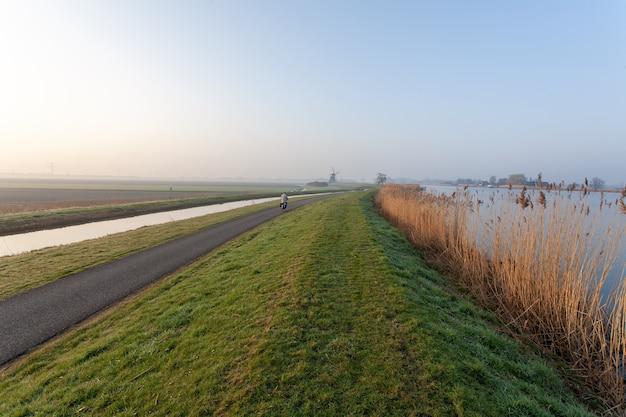 Sceneria holenderskiego krajobrazu polderowego pod bezchmurnym niebem