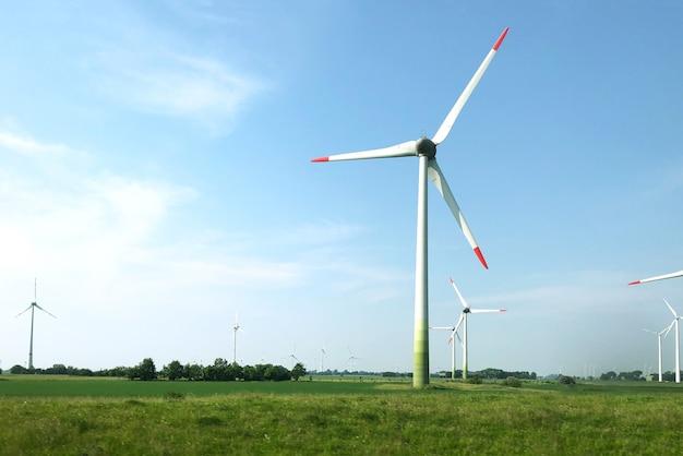 Sceneria turbin wiatrowych na środku pola pod bezchmurnym niebem