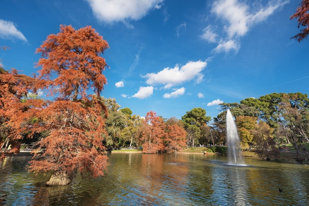 Sceniczny jesień widok el retiro park w madryt, hiszpania.