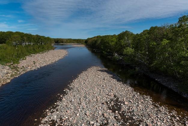 Sceniczny widok rzeka w lesie, petit etang, cabot ślad, przylądek breton wyspa, nowa scotia, kanada