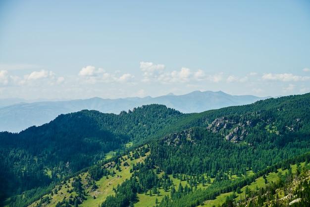 Sceniczny widok z lotu ptaka zielonego lasu wzgórza i długi pasmo górskie pod niebieskim niebem. niesamowity, minimalistyczny alpejski krajobraz rozległych połaci. cudowna żywa góralska sceneria z pięknymi górami i lasem.