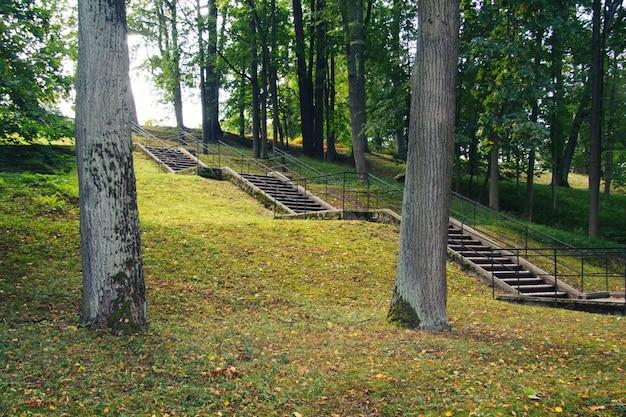 Schody kroczą w jesiennym parku miejskim