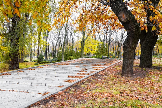 Schody w parku pokryte liśćmi w jesienny dzień w słońcu