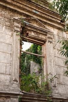 Ściana starego zniszczonego domu, porośnięta krzakami i trawą.