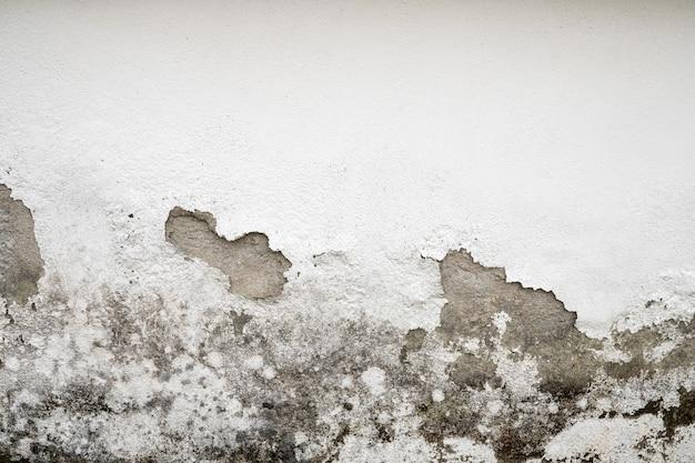 Ściana uszkodzona przez wilgoć