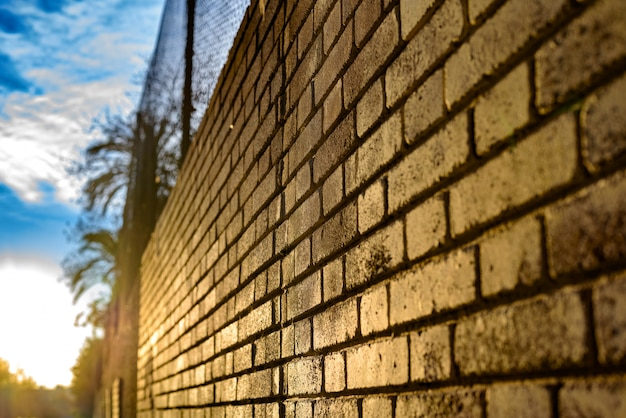 Ściana z cegieł tło przy zmierzchem z słońce promieniami