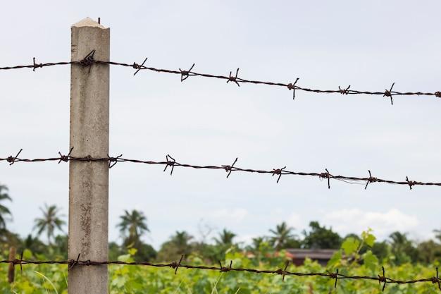Ściana z drutu kolczastego chroni farmę złodziei i rolnictwa obronnego