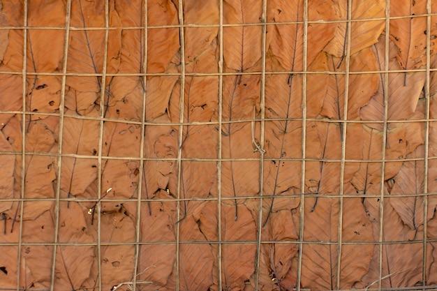 Ściany są wykonane z suszonych liści używane jako tło.