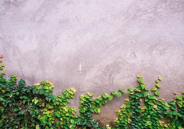 Ściany w stylu vintage.
