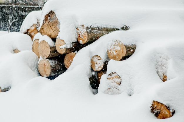 Ścięte drzewa pod śniegiem. surowce dla przemysłu drzewnego. przechowywanie drewna na wolnym powietrzu. firma z branży drzewnej. drzewny. roundwood. drewno okrągłe