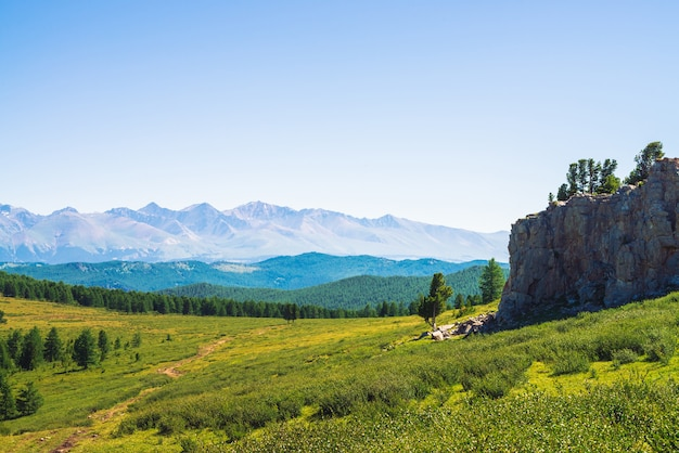 Ścieżka do gigantycznych gór przez zieloną dolinę i las.