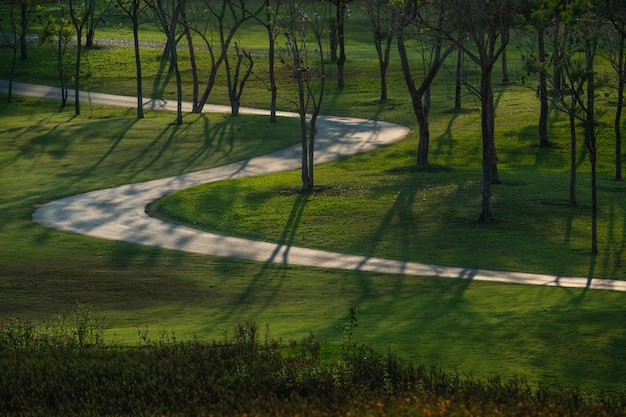 Ścieżka i piękne drzewa prowadzą do biegania lub spacerów i jazdy na rowerze w parku.