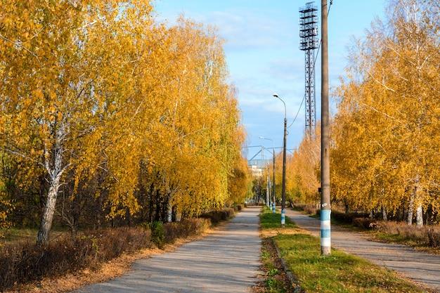 Ścieżka miejska usiana opadłymi żółtymi, pomarańczowymi i czerwonymi liśćmi. jesienny krajobraz.