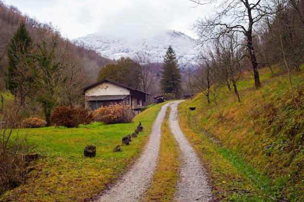 Ścieżka na wsi