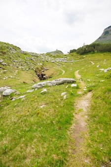 Ścieżka na wzgórzu w ausseerland, austria