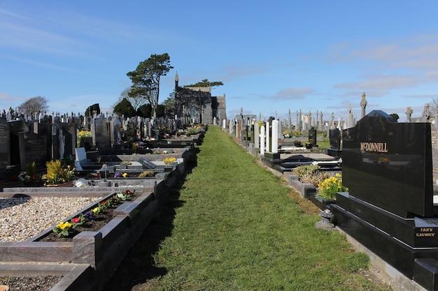Ścieżka ogrodowa na cmentarzu